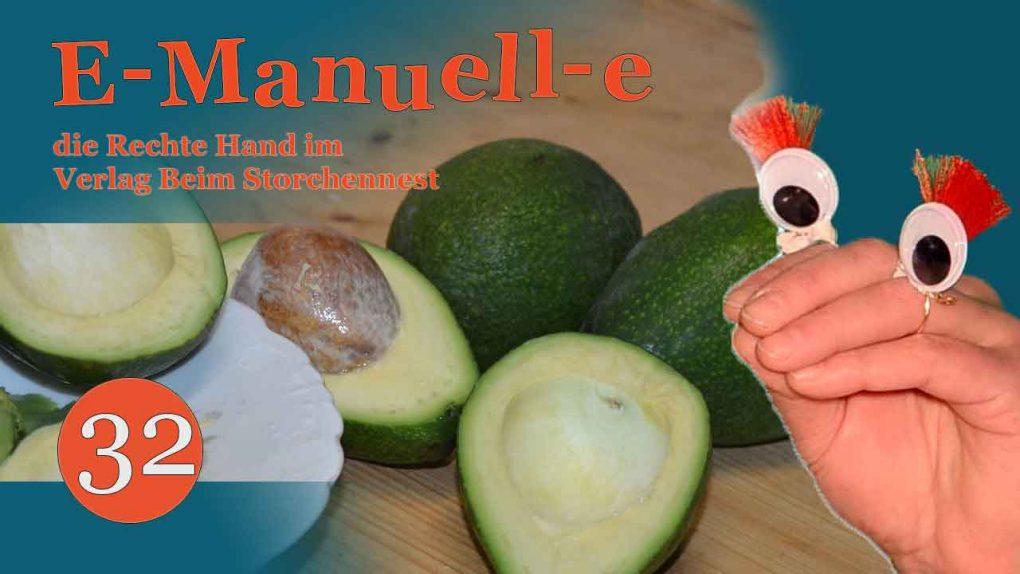 5.Kochbeitrag: Spanische Avocados